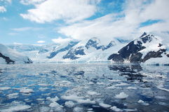 Iceberg. S and glacier in Antarctica Royalty Free Stock Photography