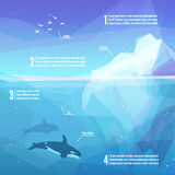Iceberg infographics. Landscape of northern and Antarctic life - Iceberg in ocean and underwater world with different animals. Low polygon style illustrations Royalty Free Stock Image