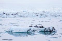 Iceberg in Jokulsarlon Glacier Lagoon, Iceland Stock Photo