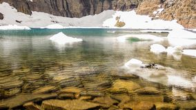 Iceberg Lake Trail Cinemagraph. Cinemagraph loop background of the Iceberg Lake Trail in summer, Glacier National Park, Montana, United States stock video footage