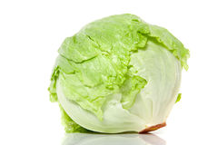 Iceberg lettuce Royalty Free Stock Images