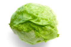 Iceberg Lettuce. With Clipping Path Stock Photography