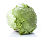 Iceberg Lettuce. With Clipping Path royalty free stock images