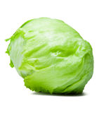 Iceberg Lettuce Alcapucci Stock Image
