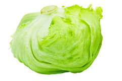 Iceberg Lettuce Alcapucci Royalty Free Stock Photography