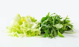 Iceberg lettuce and arugula Royalty Free Stock Images
