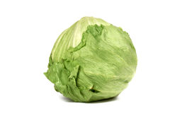 Iceberg lettuce. Close-up of whole iceberg lettuce on white background Stock Photos