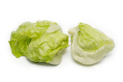 Iceberg Lettuce Stock Photos