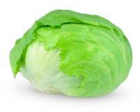 Iceberg lettuce Royalty Free Stock Image