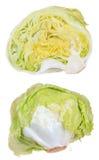 Iceberg lettuce isolated Royalty Free Stock Images
