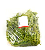 Iceberg lettuce in plastic bag package Royalty Free Stock Images