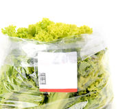 Iceberg lettuce in plastic bag package Stock Images