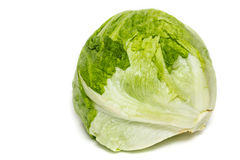 Iceberg Lettuce Stock Photography
