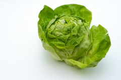Iceberg lettuce on white background stock photos