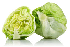 Iceberg lettuce Royalty Free Stock Photos