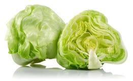Iceberg lettuce royalty free stock images
