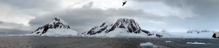 Iceberg and mountains in Antarctica Royalty Free Stock Image