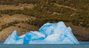 Iceberg na água, a geleira Perito Moreno argentina Imagens de Stock