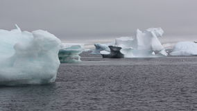 Iceberg na Antártica Imagem de Stock Royalty Free