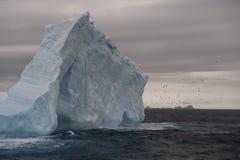 Iceberg na Antártica Fotografia de Stock Royalty Free