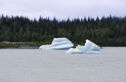 Iceberg nel lago Mendenhall immagine stock libera da diritti