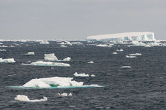 Iceberg nel mare di Weddel fotografie stock