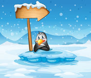 An iceberg with a penguin and an arrow Royalty Free Stock Images