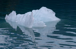Iceberg Reflections Stock Image