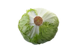 Iceberg salad Royalty Free Stock Photo