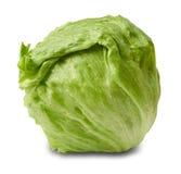 Iceberg salad - head of lettuce royalty free stock photo
