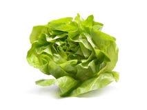 Iceberg salad Royalty Free Stock Images