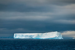 Iceberg in southern ocean off antarctic peninsula Royalty Free Stock Image