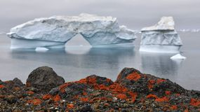 Iceberg and stony coast of Greenland. Red lichen on the shore stones. Nature and landscapes of Greenland. royalty free stock images