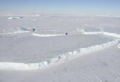 Iceberg tabulari Immagine Stock