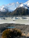 Iceberg on Tasman glacier lake, New Zealand Stock Image