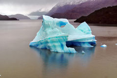 Iceberg, Torres del Paine Photo stock