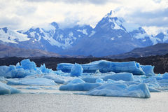 Iceberg in Upsala Glacier of Argentina Stock Photo