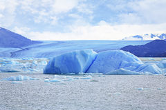 Iceberg at Upsala Glacier Royalty Free Stock Photo