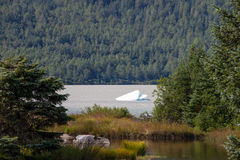 Iceberg in waters, Mendenhall Glacier Park, Alaska Royalty Free Stock Images