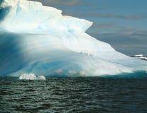 Iceberg y pingüino Foto de archivo libre de regalías