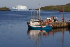 Icebergs à la crique d'oie Photographie stock
