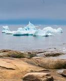 Icebergs échoués sur les rivages de la ville d'Iulissat, Greenla Image stock