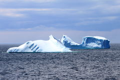 Icebergs. Near the harbour in Goose Cove stock photography