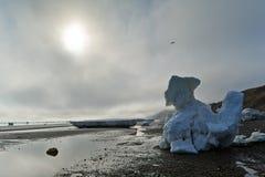 Icebergs images stock