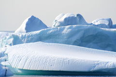 Icebergs. Off the coast of Newfoundland royalty free stock photos