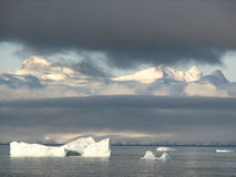 Icebergs antarctiques Images stock