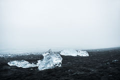 Icebergs on the beach with black volcanic sand in Iceland Royalty Free Stock Photography