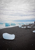 Icebergs on a black beach Royalty Free Stock Image