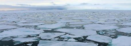 Icebergs dans l'Arctique Image libre de droits