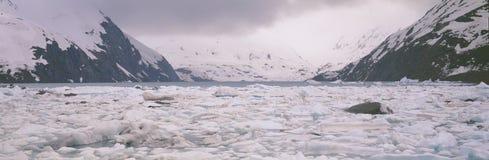 Icebergs dans le lac Portage images stock